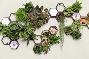 Модульная система для домашних растений